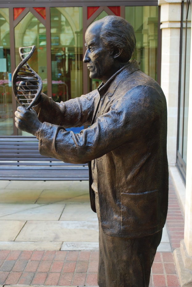 Francis Crick - Richard Austin sculpture (2)