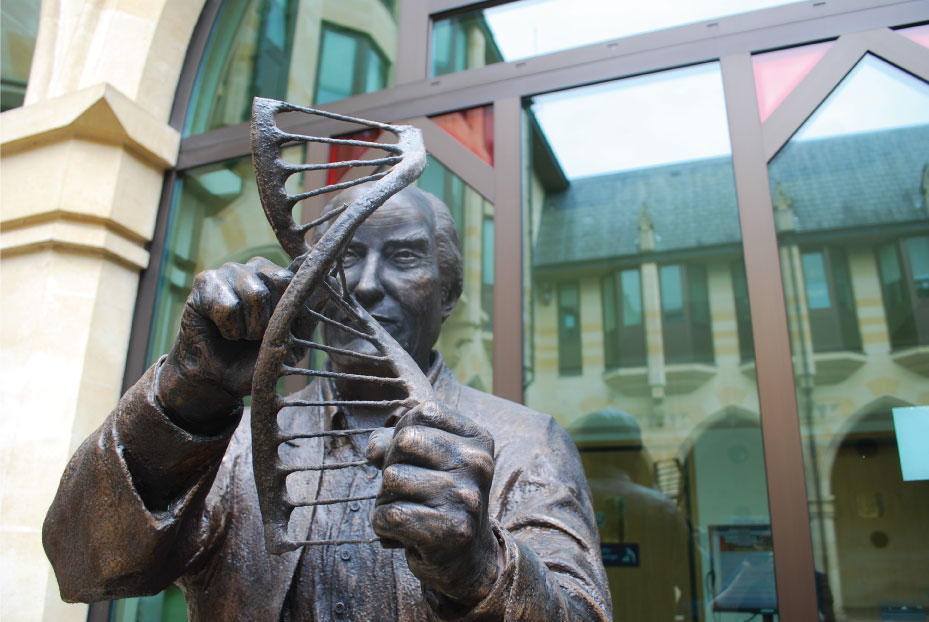 Francis Crick - Richard Austin sculpture